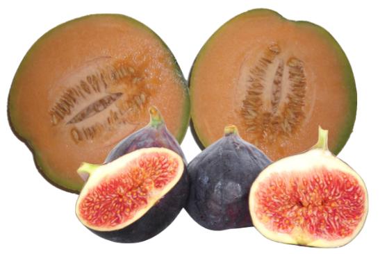Fig Melon Aromatherapy Fragrances